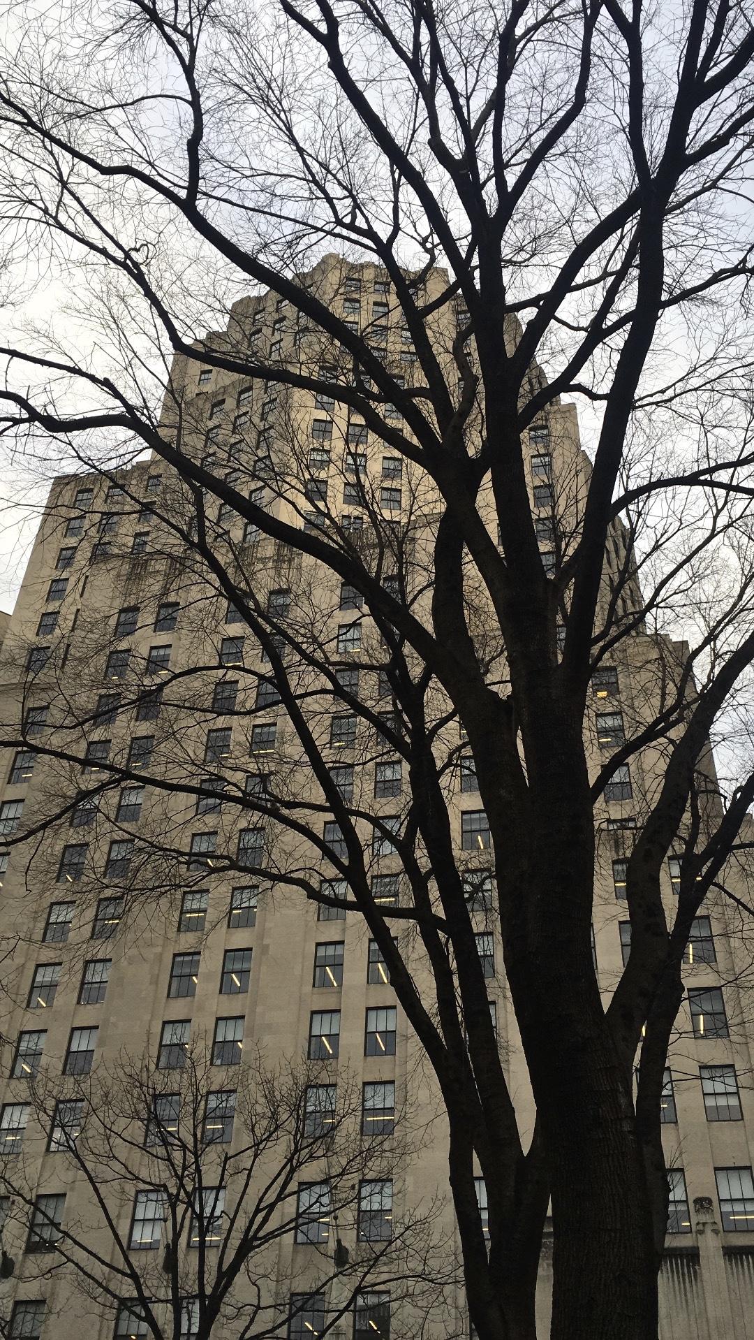 Madison Square Park - Carl Barnett Design/Studio