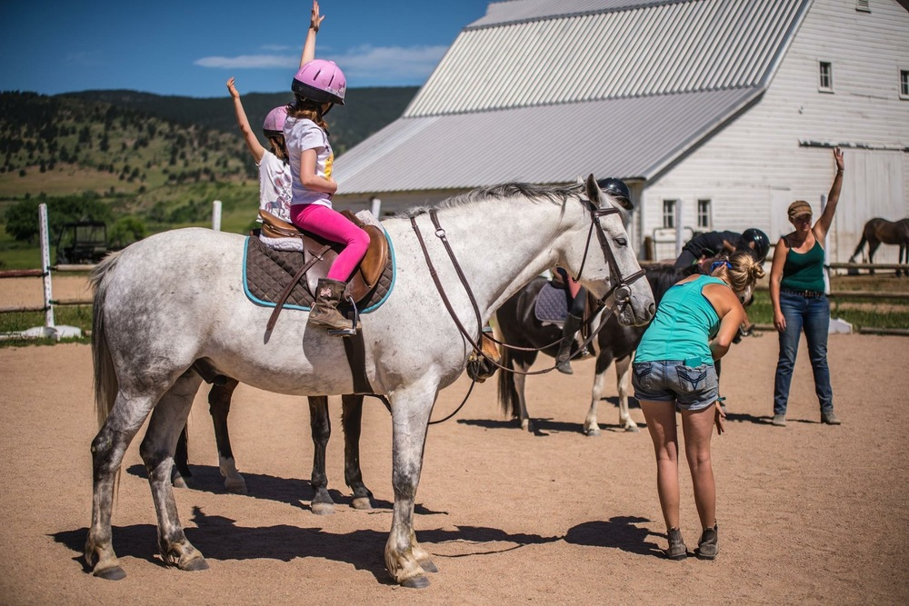 horse yoga.jpeg
