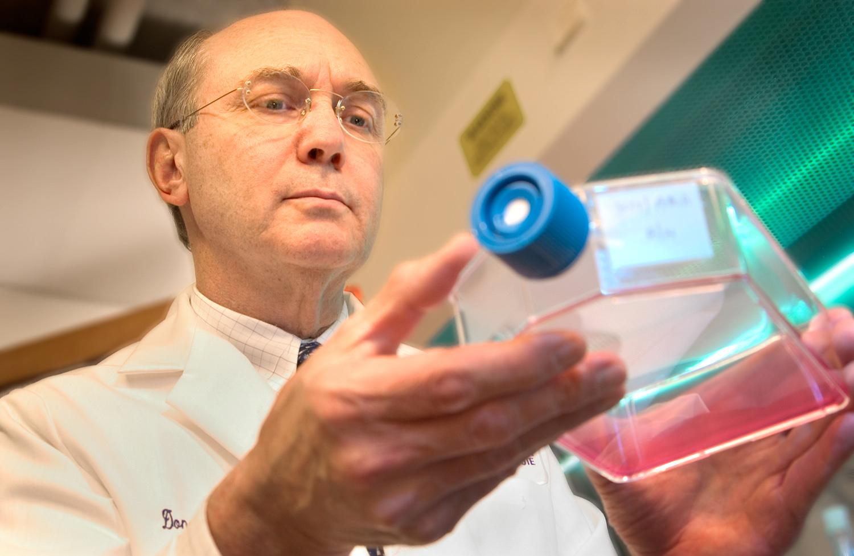 bio medical research scientist