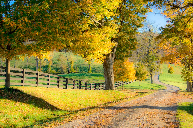 Country Road Duchess County NY