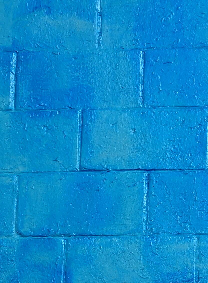 blue_crop.JPG
