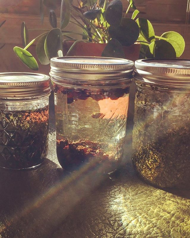 Herb infused oils=pure magic 🌿🌿🌿🌿🌿🌿🌿🌿🌿 Incorporating these into an upcoming workshop! Check out the website for all workshop registrations💓 #herbalism #plantpower #plantmagic #gowiththeFLŌ