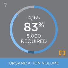 Example Volume Widget