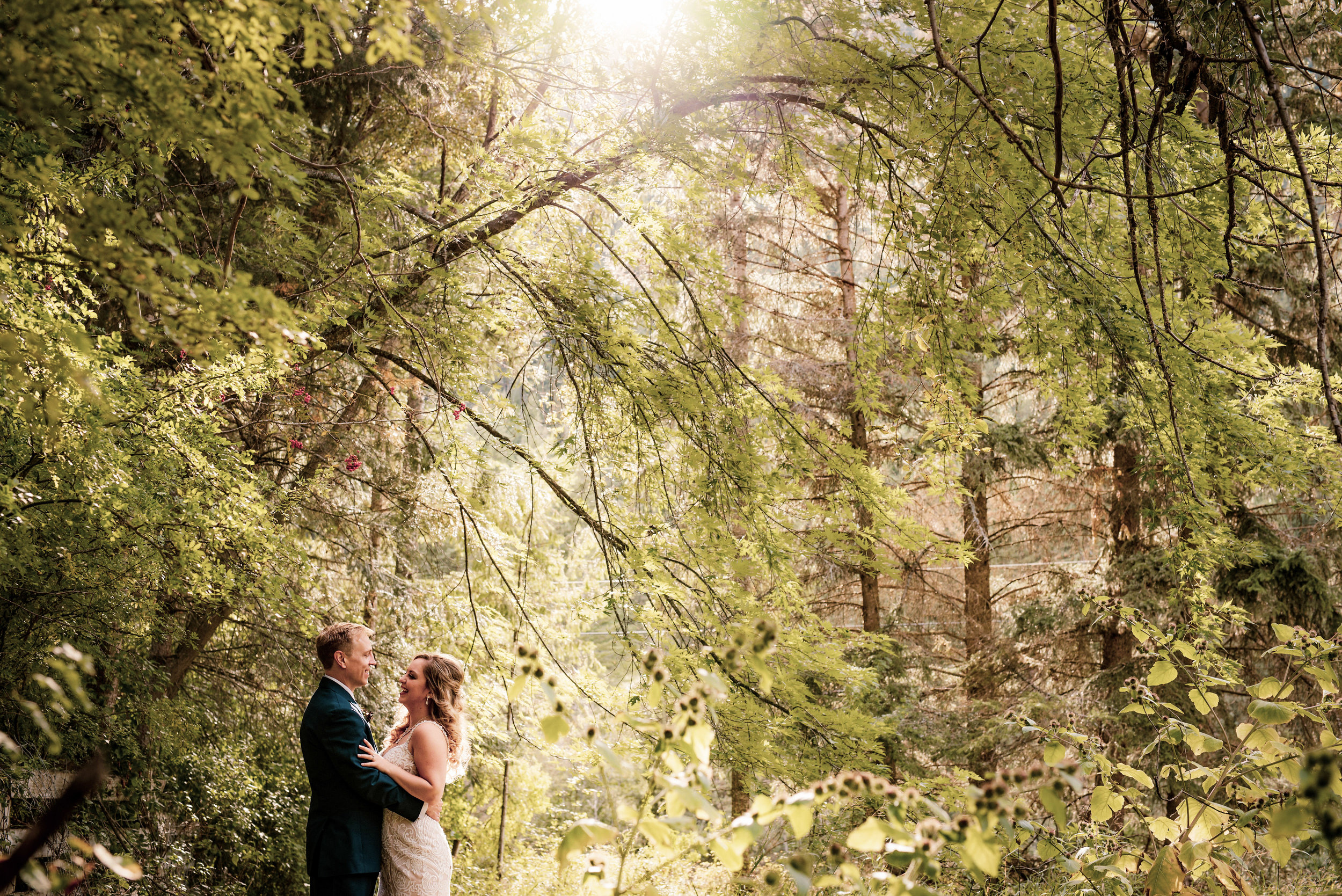 Blank canvas - Create an enchanted forest wedding or a woodsy wedding experience as you like
