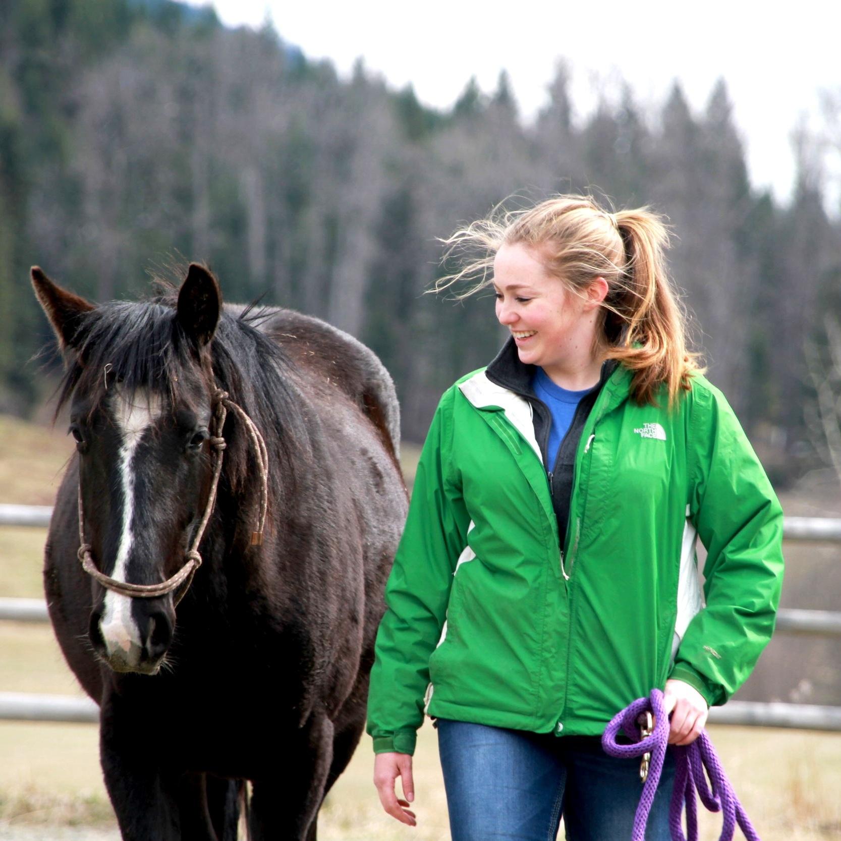 Equine Programs -
