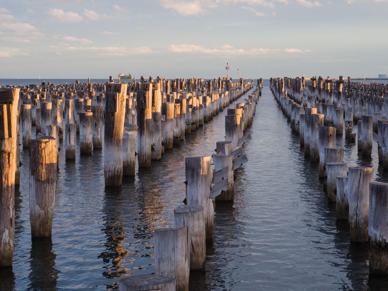 Princes Pier wooden poles, Melbourne.