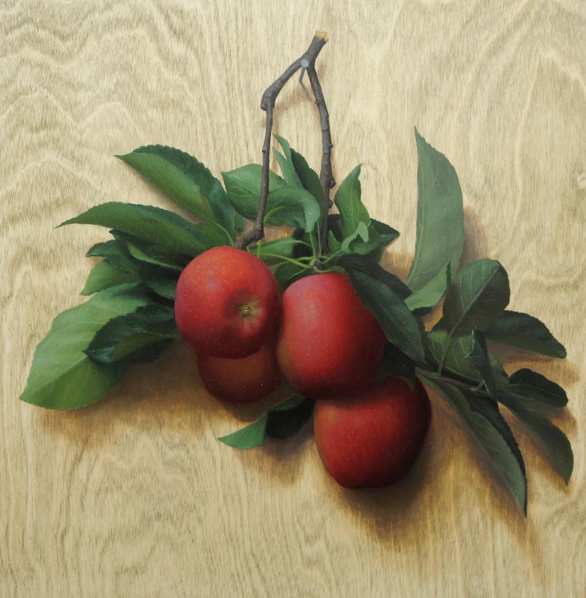 """Brendan Johnston """"Hanging Apples"""" 16""""x16"""" Oil"""