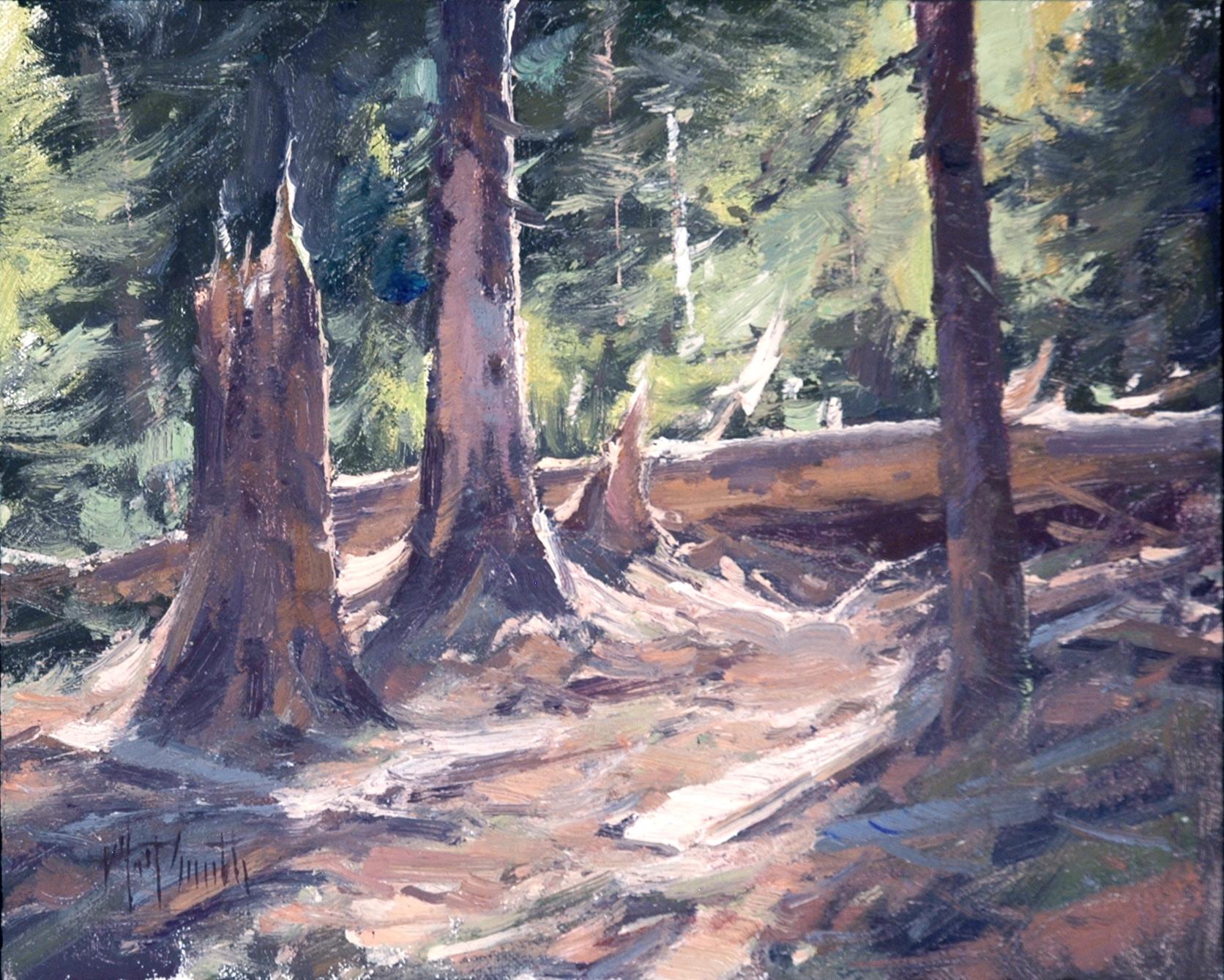 """Matt Smith """"An Old Forest"""" 8""""x10"""" Oil"""