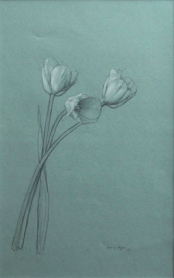 "Katie Whipple ""Dutch Tulips"""