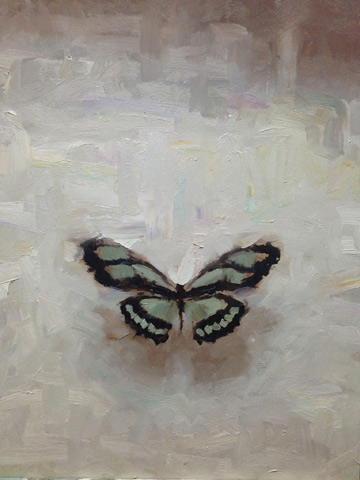 "(SOLD) ""Butterfly"" 13""x10.75"" Oil"