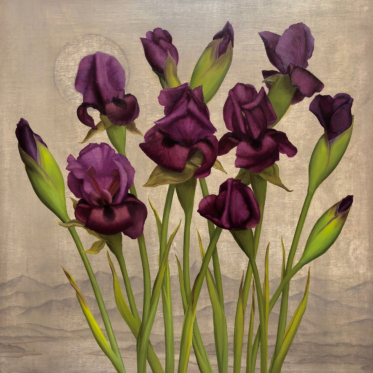 "Brendan Johnston ""Iris Germanica"" 18""x18"" Oil"