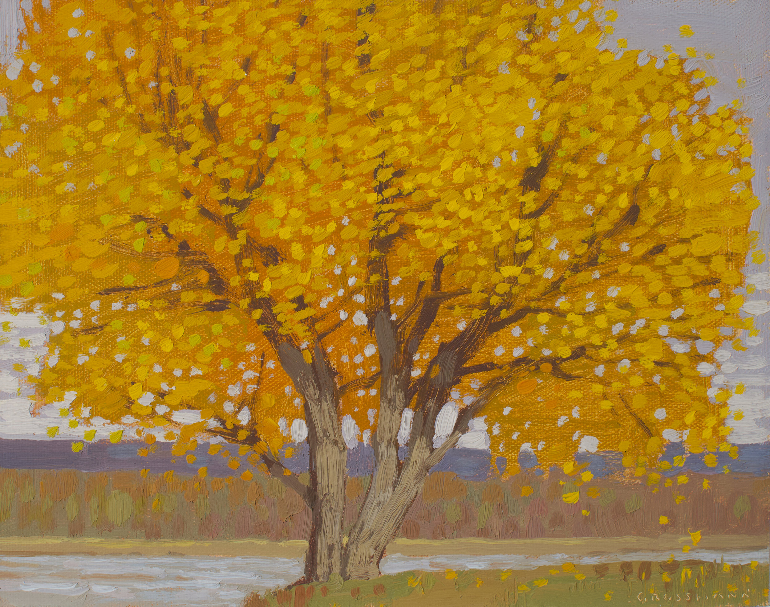 """(SOLD) """"Autumn Cottonwood and River View"""" 8 x 10 Oil"""