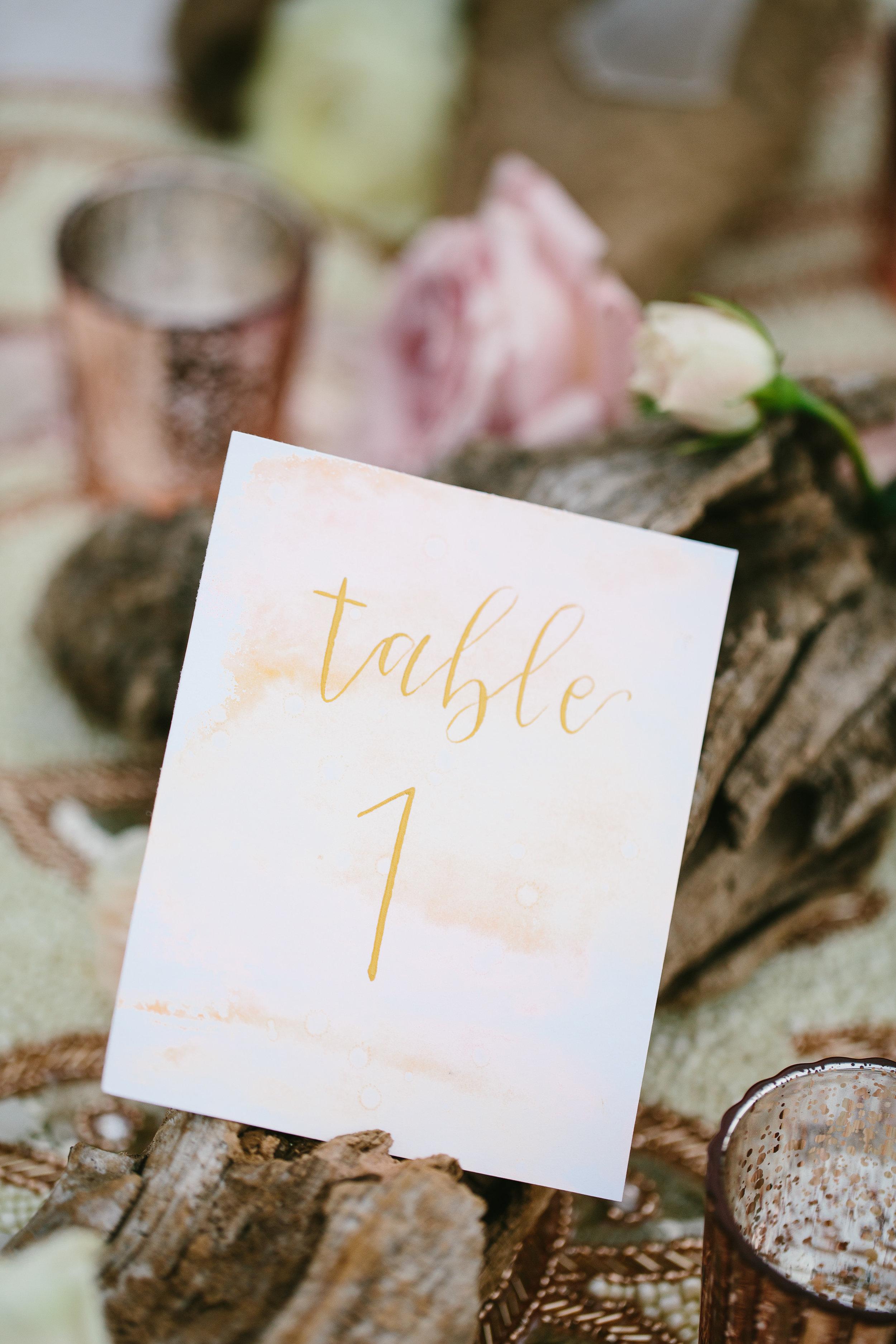 Engaged-Asheville-Joy-Unscripted-Wedding-Calligrapher-Rachael-McIntosh-Photography-6.jpg