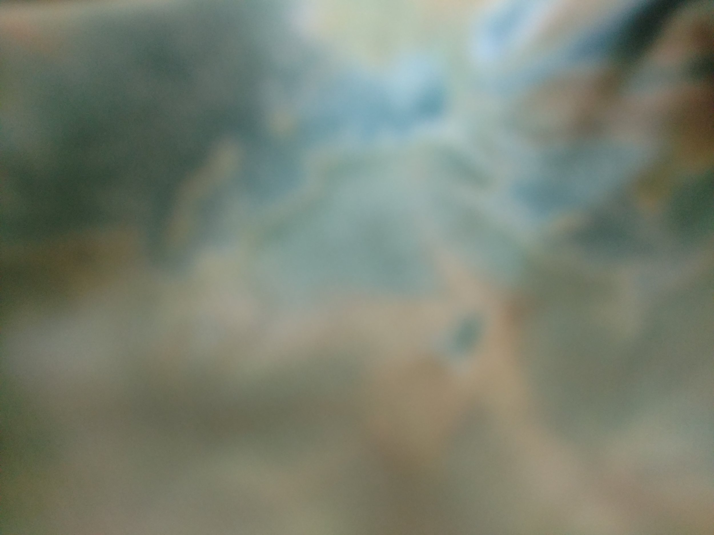 willroth-co-free-texture-gradient-043.jpg