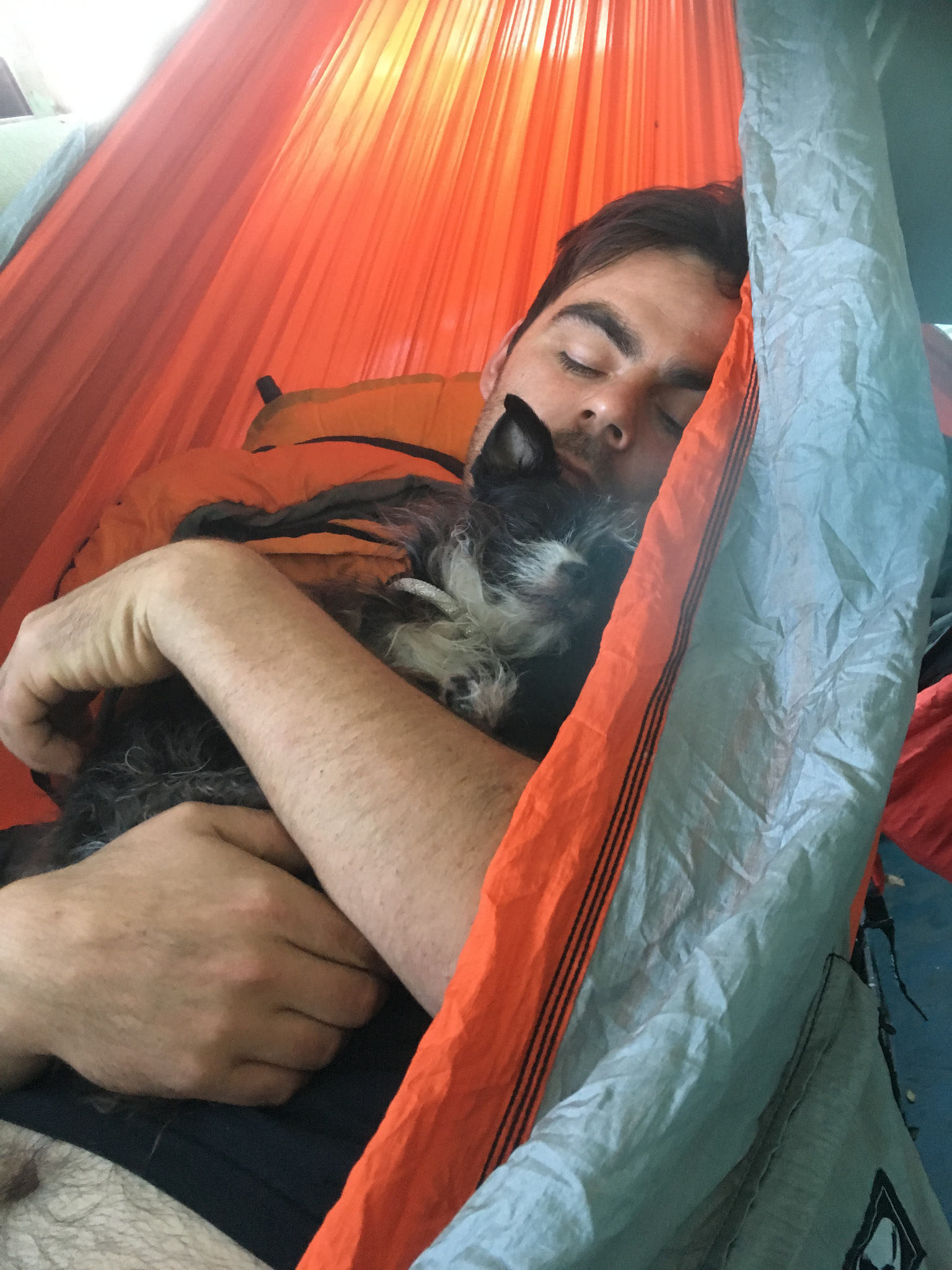 Pancho and Wolfgang, the morning after