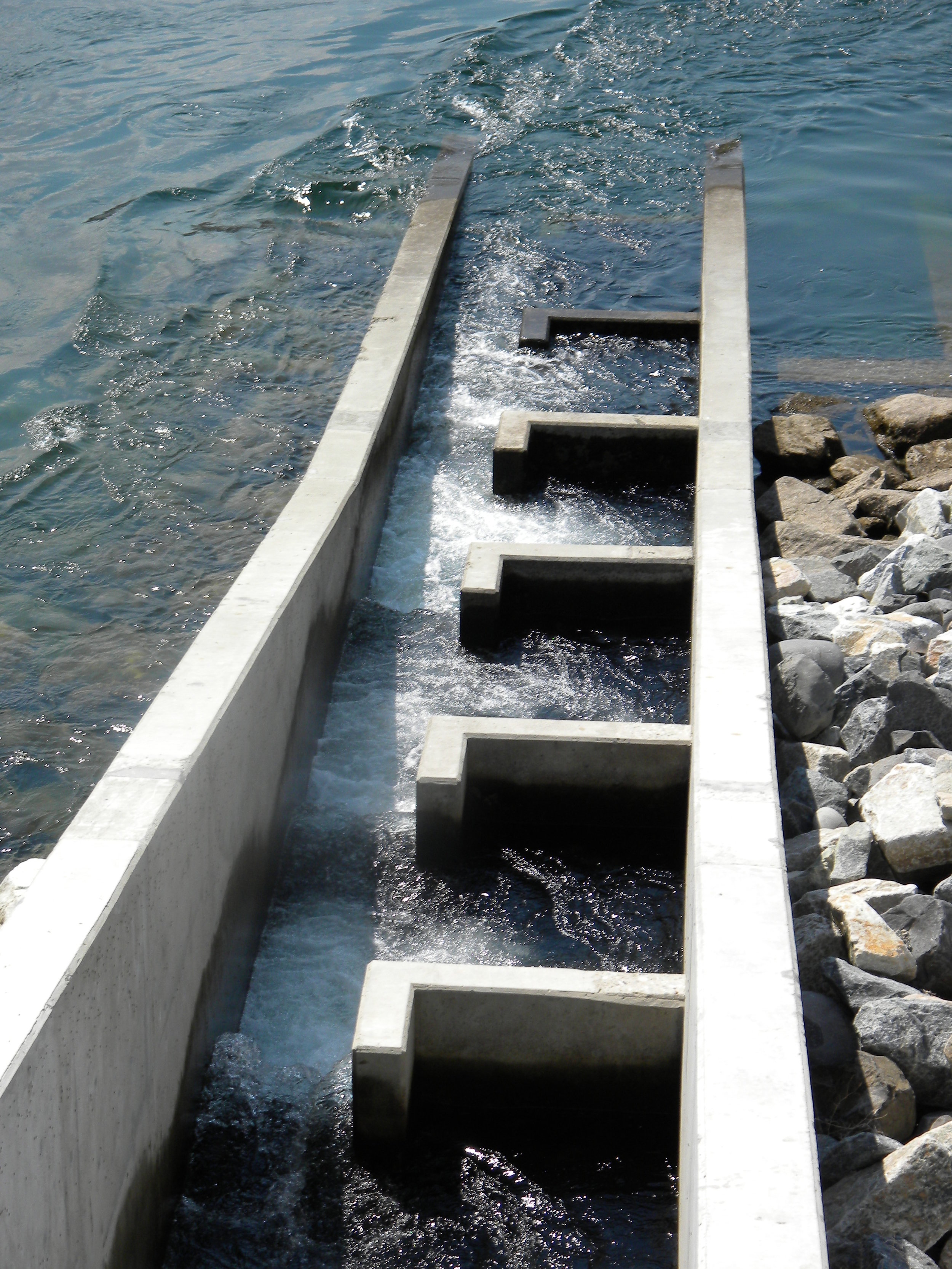 fish ladder from above.jpg