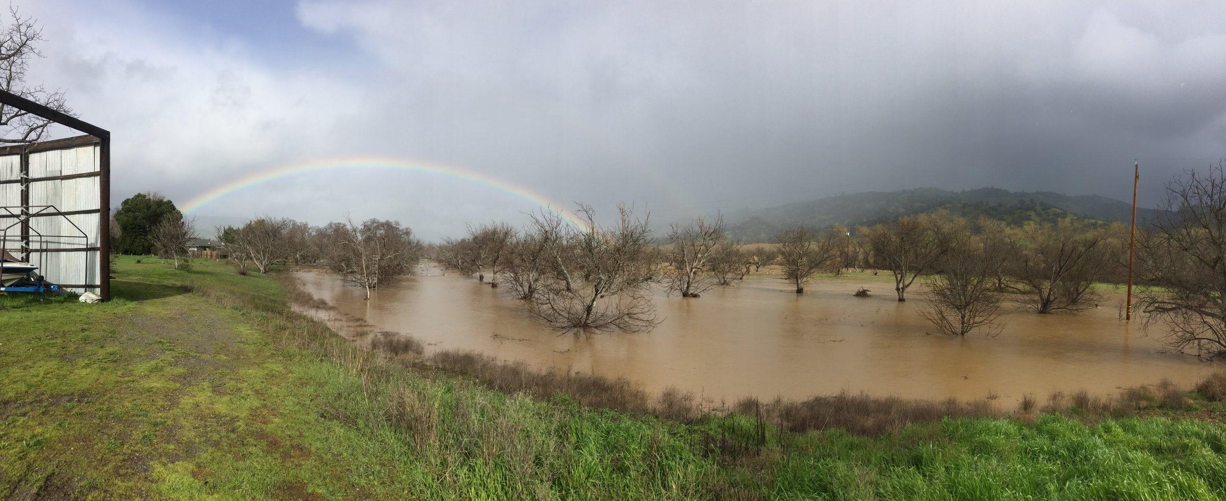 That time our walnut orchard flooded!