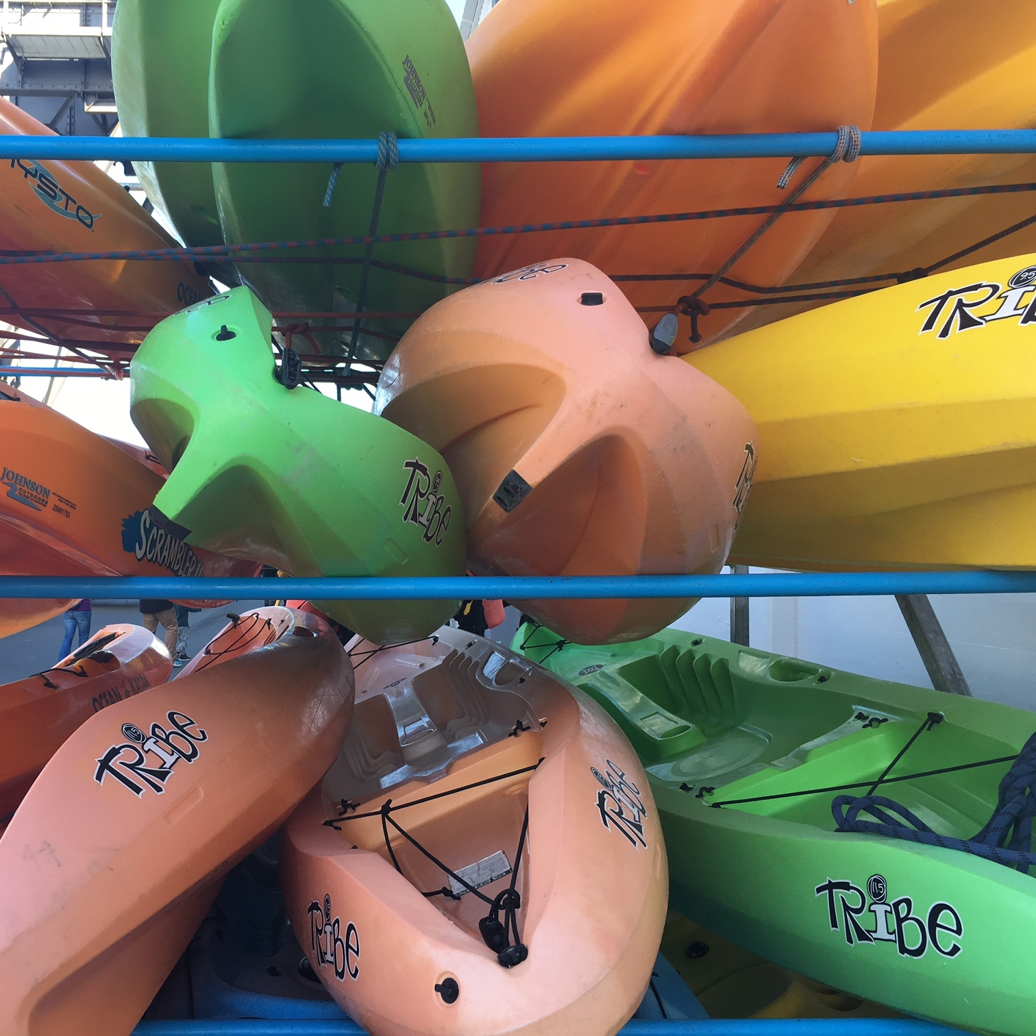 Kayaks, Wellington by The Doubtful Traveller