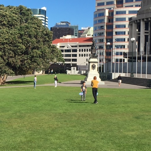 Parliament lawn, Wellington by The Doubtful Traveller
