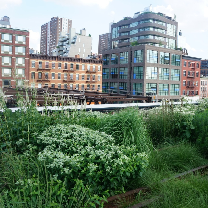 Copy of New York from High Line Park by Zara Mansoor for The Doubtful Traveller