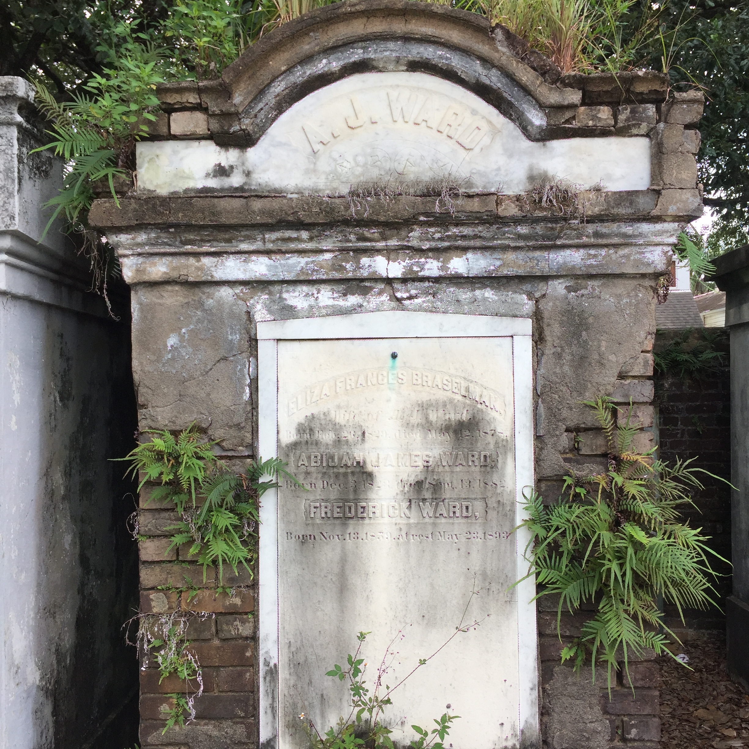 Lafayette Cemetery by Eleanor Currier for The Doubtful Traveller