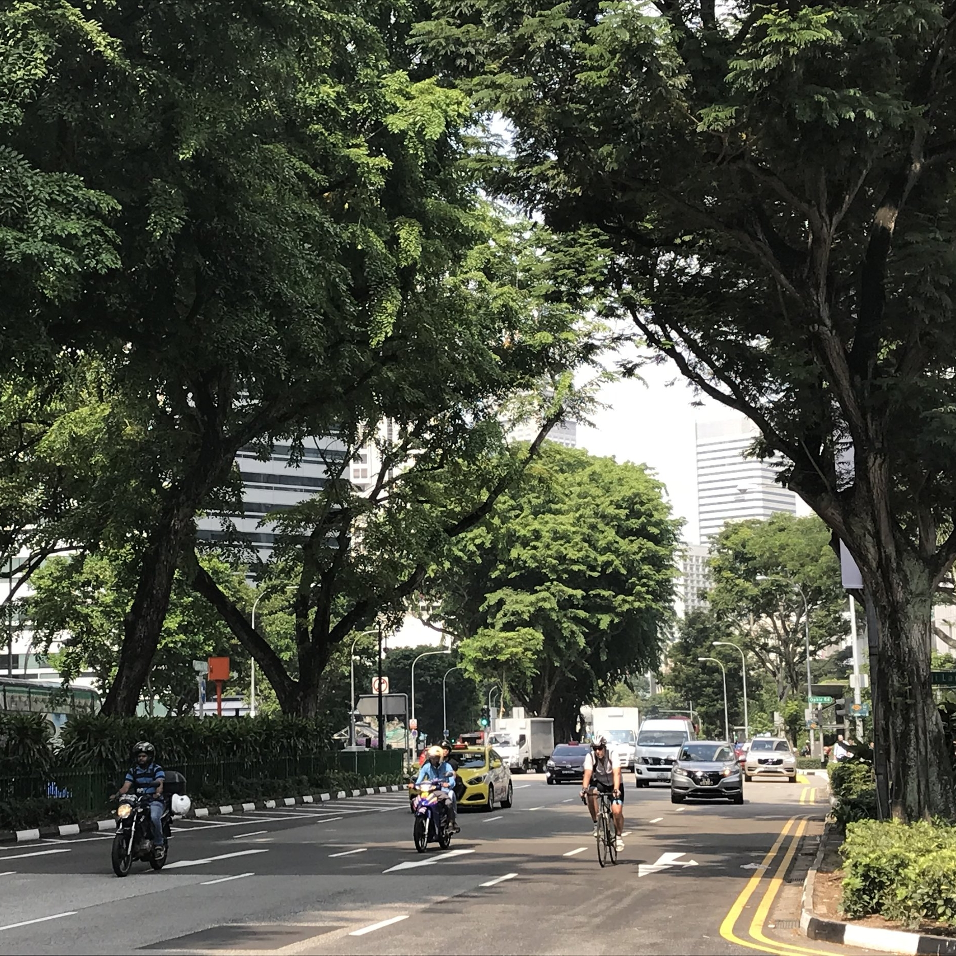 Singapore by The Doubtful Traveller