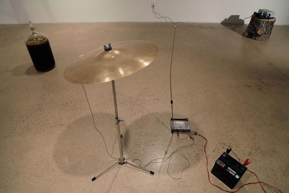 """Kara Uzelman & Jeffrey Allport """"Warblers"""" 2012 installation view / Photos: Devin McAdam"""