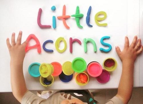 littleacorns.jpg