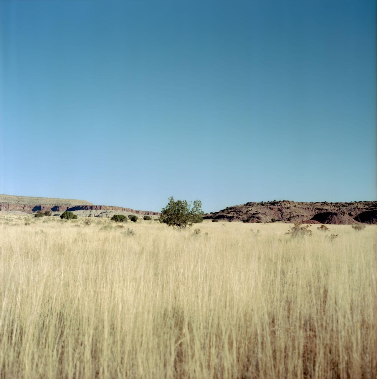 absentmindedphotographer :     MI - LA   Somewhere in Arizona   November 2014