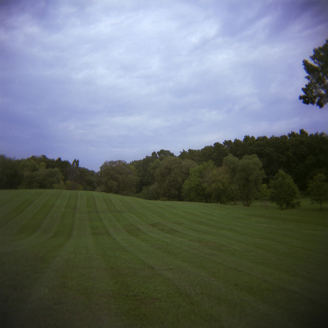 Our favorite snow sledding park in Ypsi. Sept, 2012.   Holga, Fuji Reala