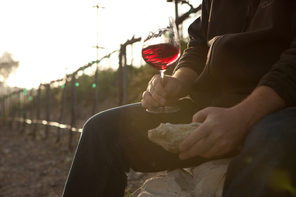 """WINE</a><strong></br></strong><a href=""""http://www.dinamandedirector.com/wine-reel"""">Watch Reel→</a>"""