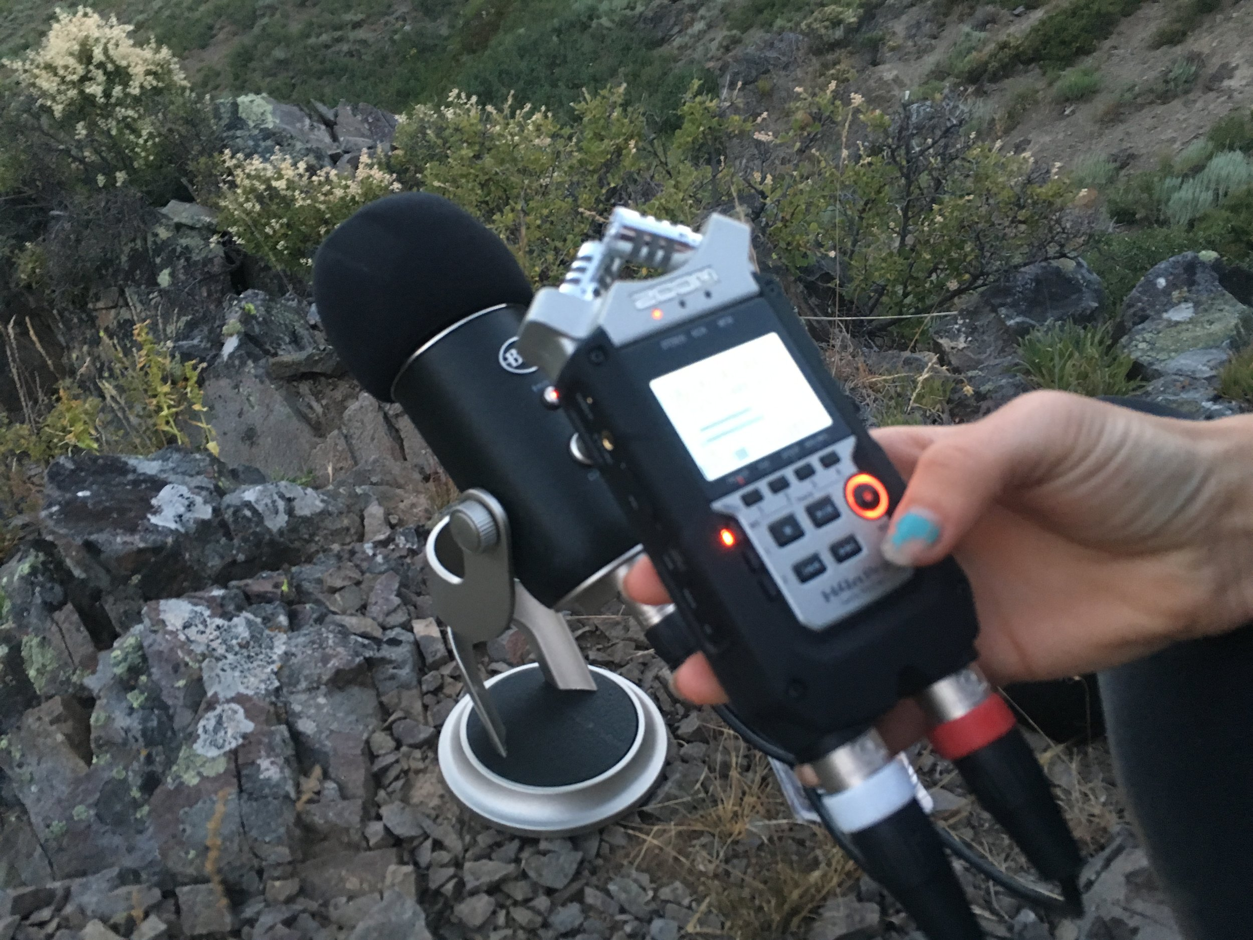 Howl survey recording equipment. Photo: Avery Shawler