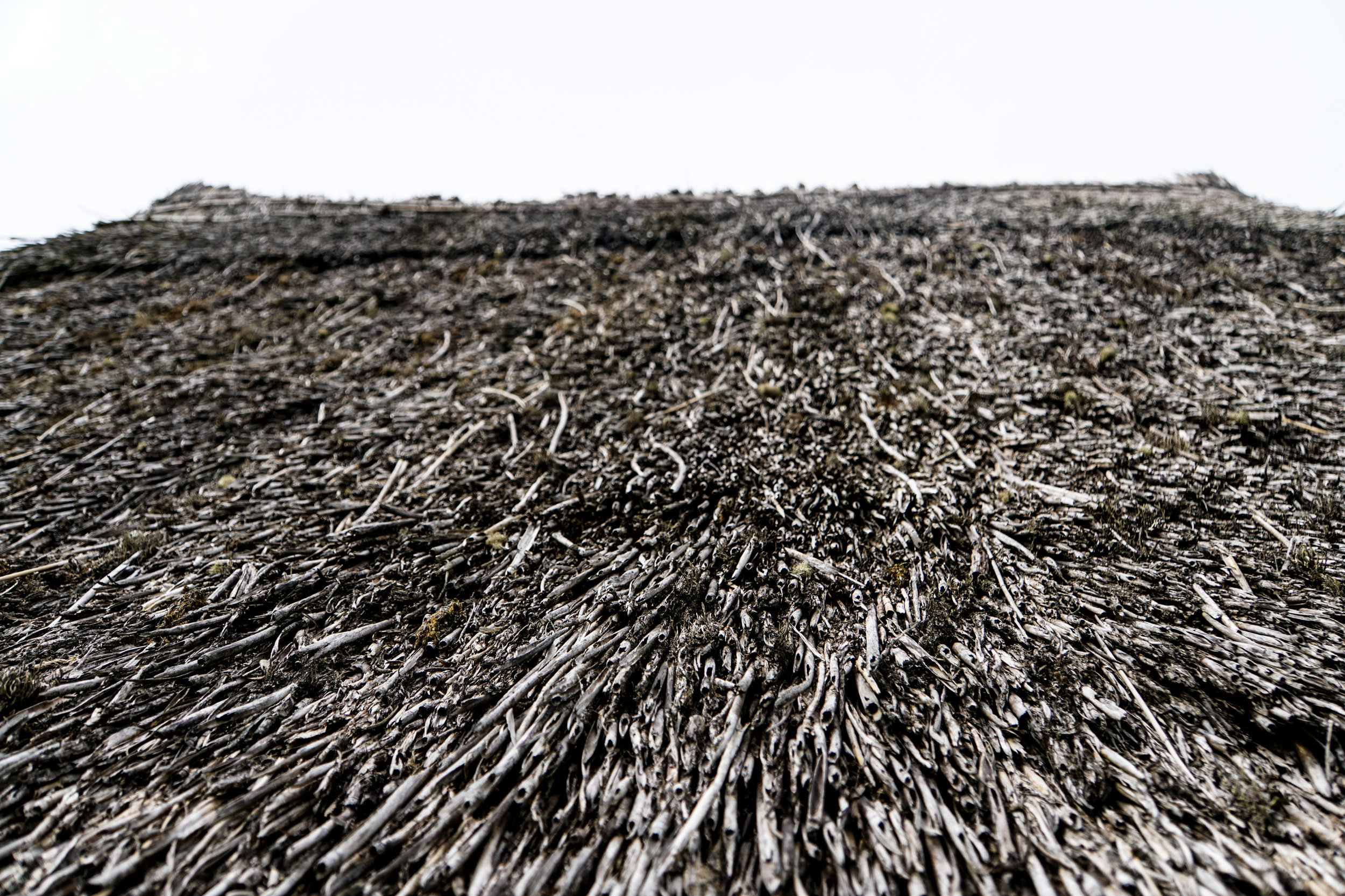 Roof made of branches.jpg