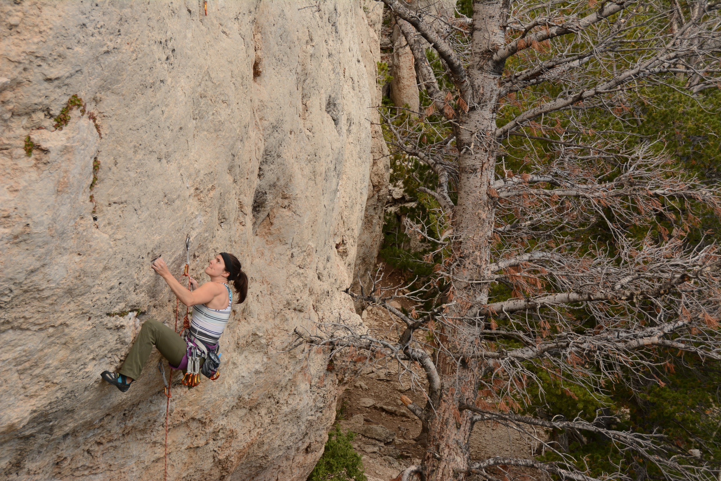 Leslie on Limestone Cowboy in Wild Iris. Photo by Erik Christensen.