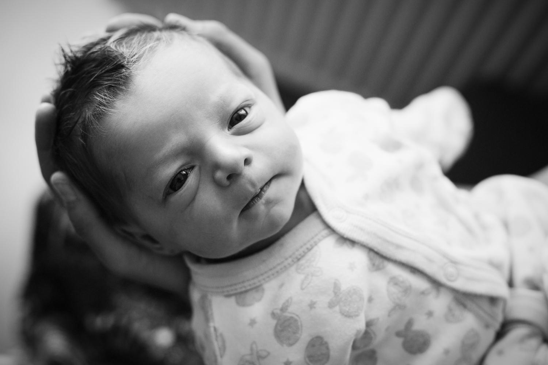 Fecni novorozencu doma.jpg