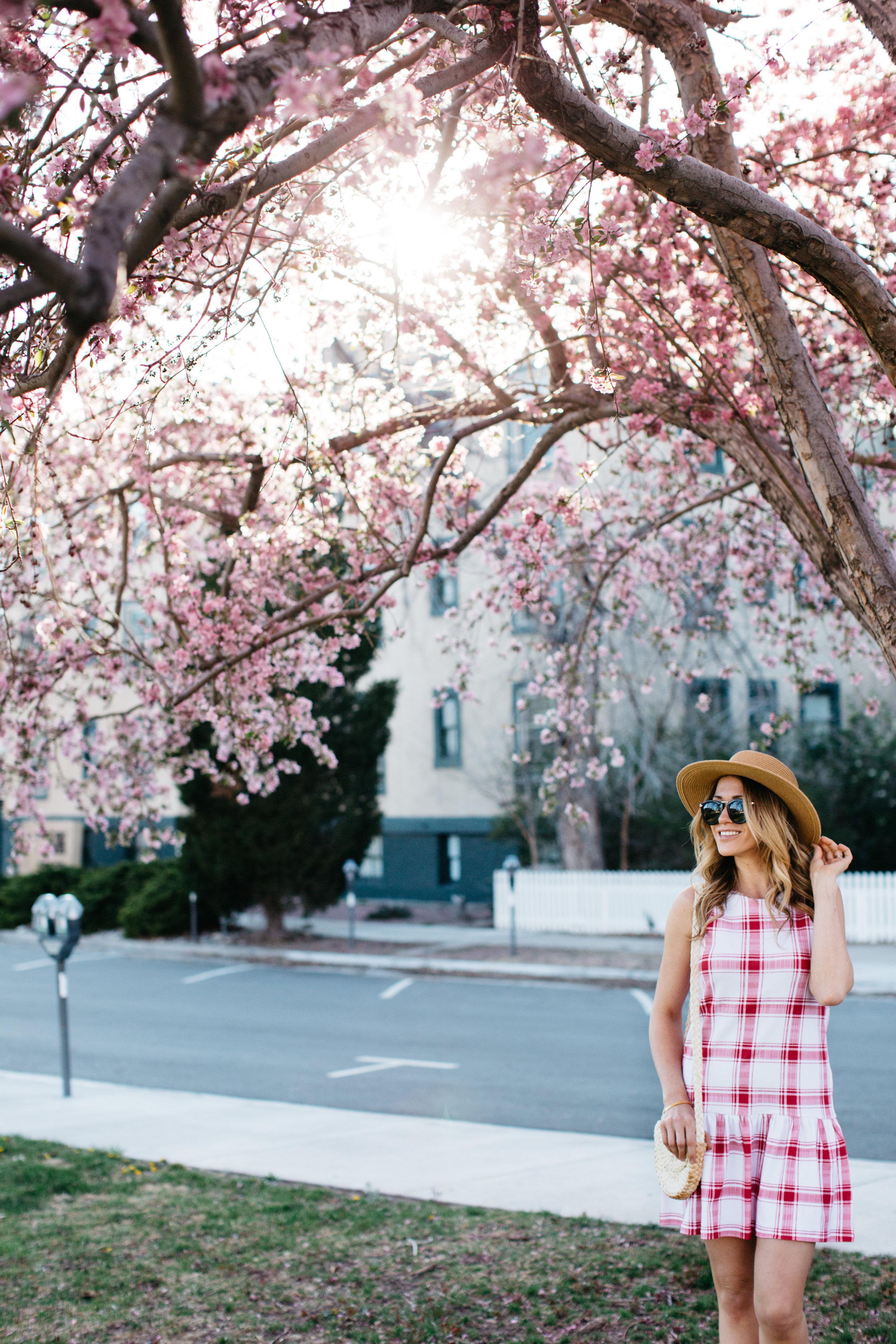 colorado-springs-fashion-photographer-15.jpg