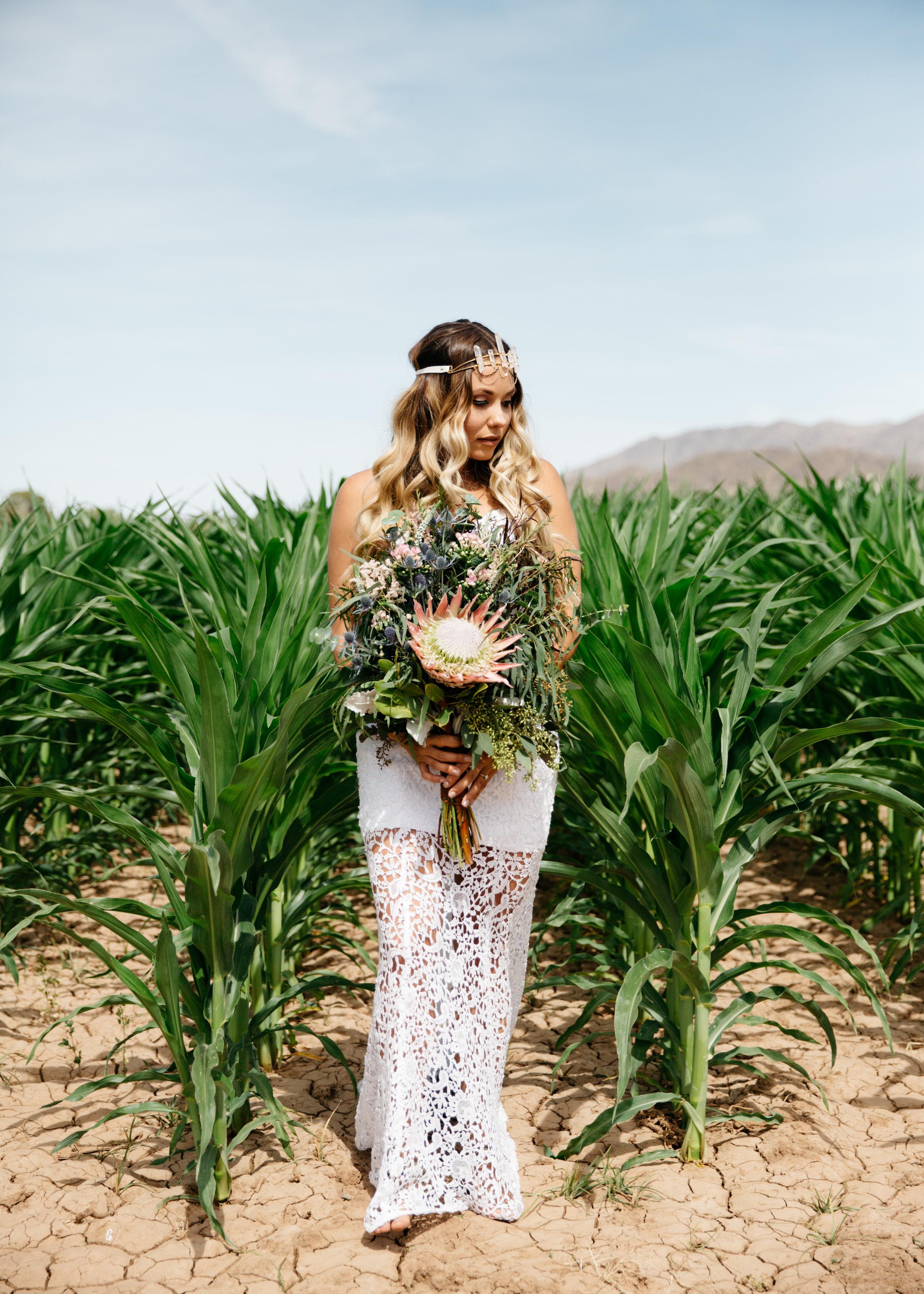 colorado-springs-wedding-photographer-14.jpg