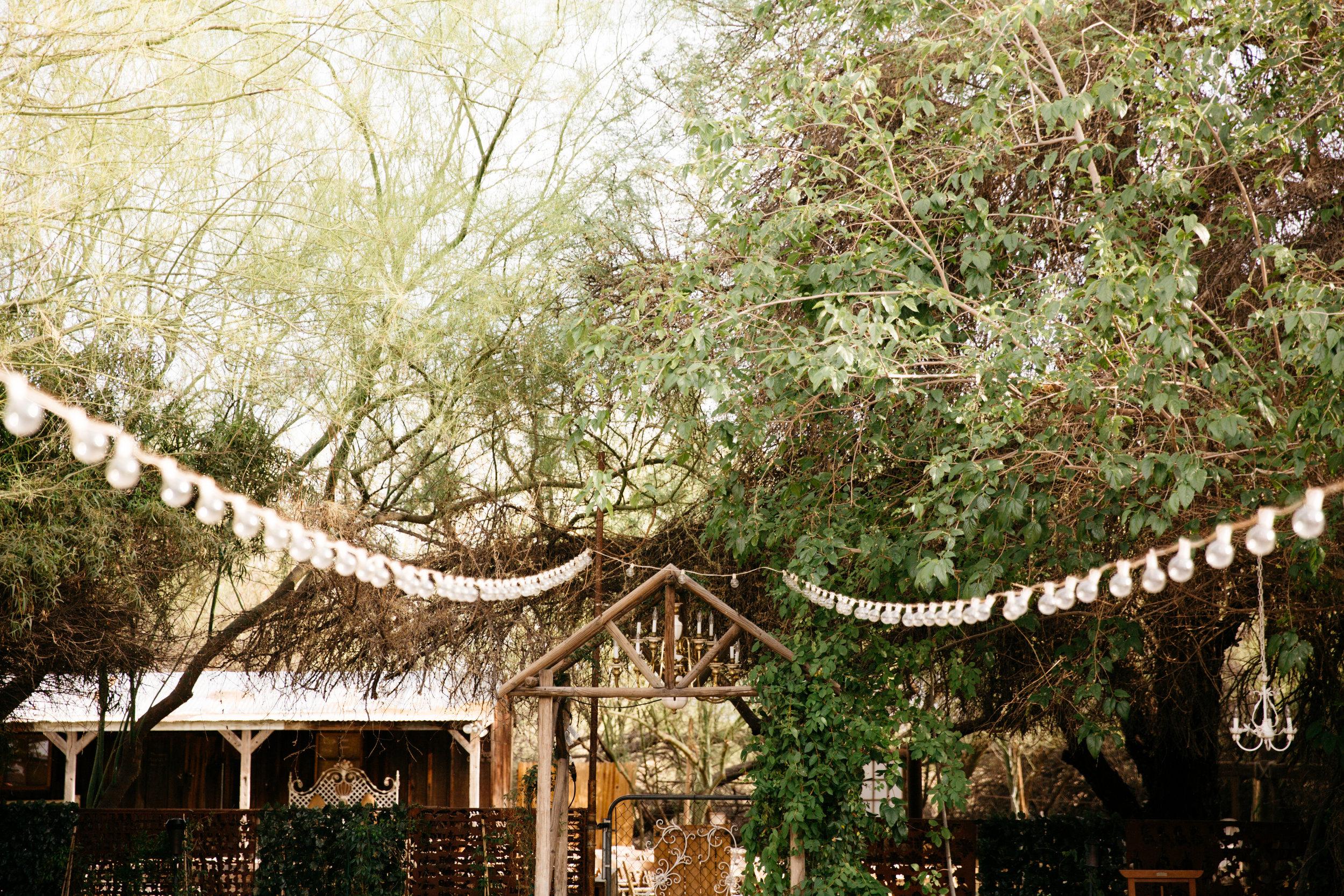colorado-springs-wedding-photographer-39.jpg