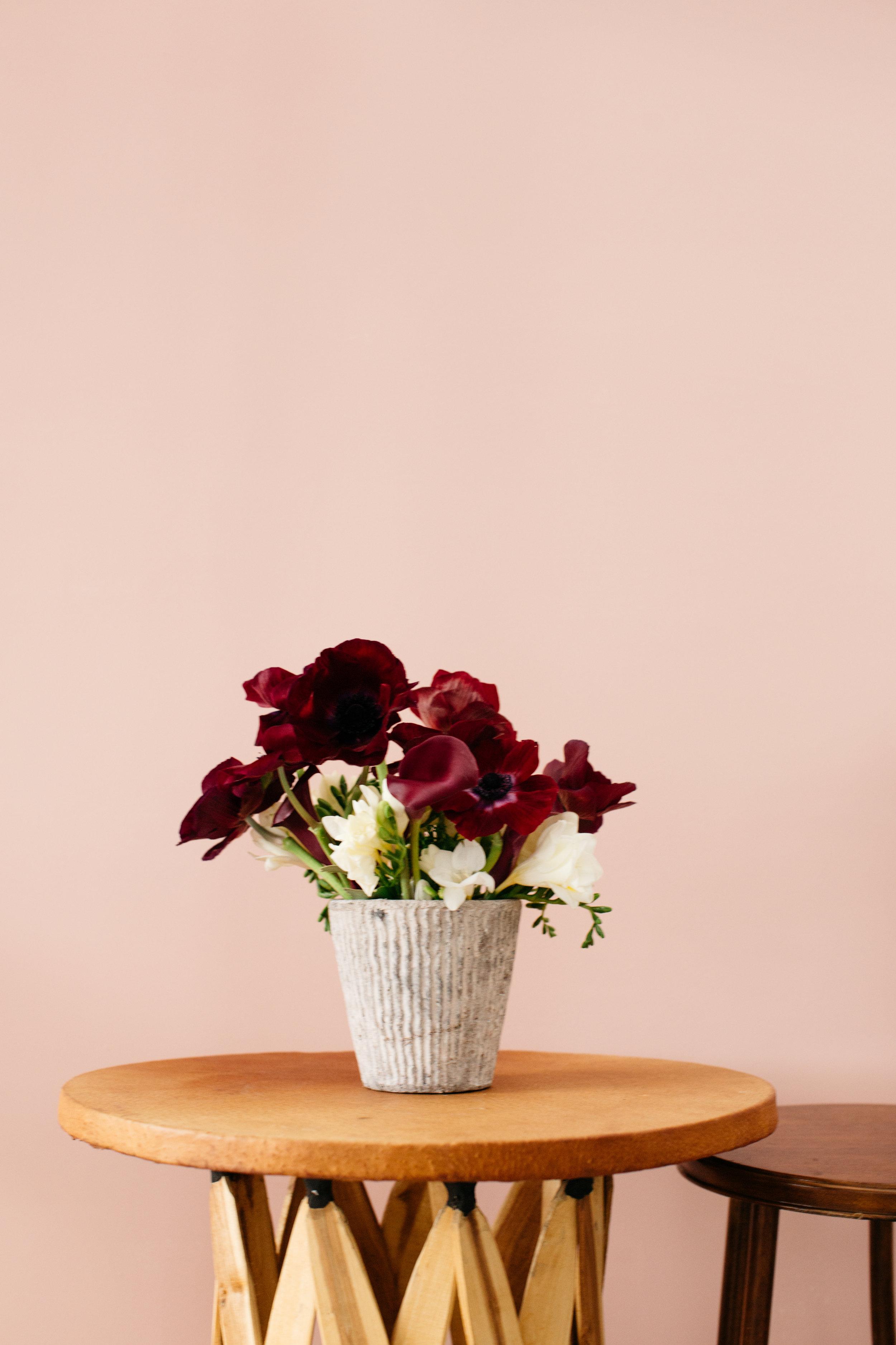 bloom-and-press-cos-theepsstudio-49.jpg