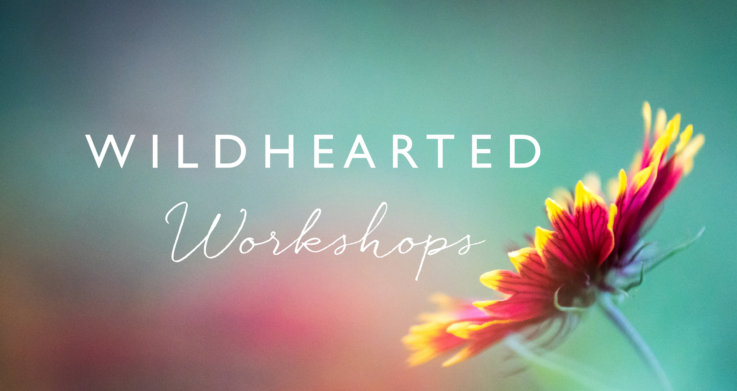 Wildhearted Workshops