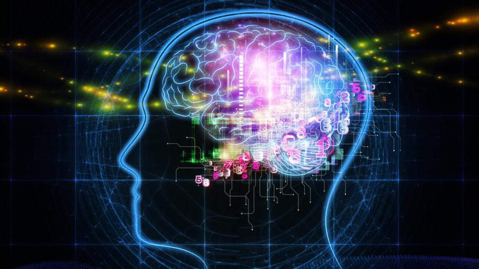 Image Source:   Human Brain Project under threat © A Health Blog