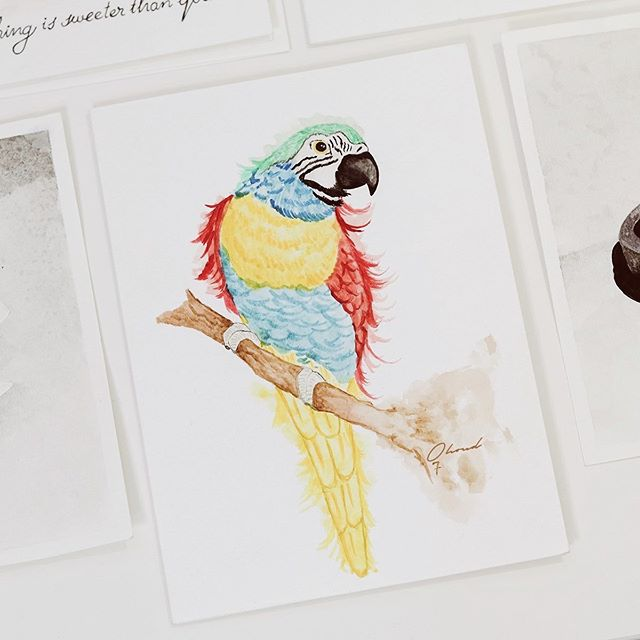 Parrot Macaw in watercolor 🦜