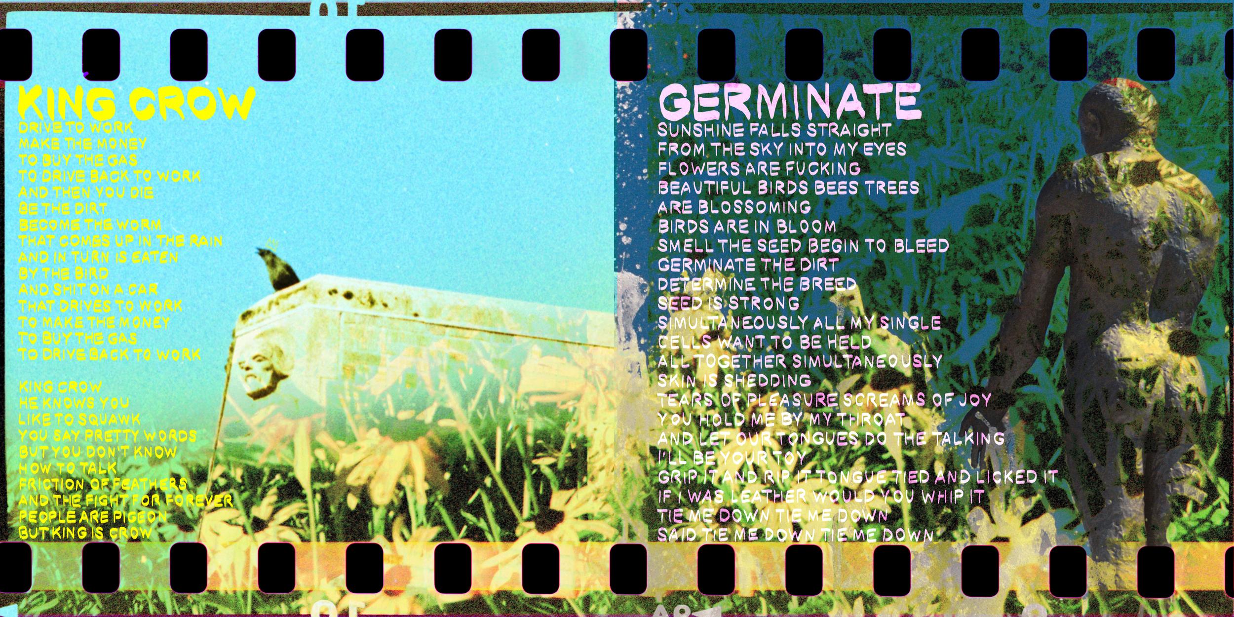 11KingCrow-GerminateBOOKLET.png