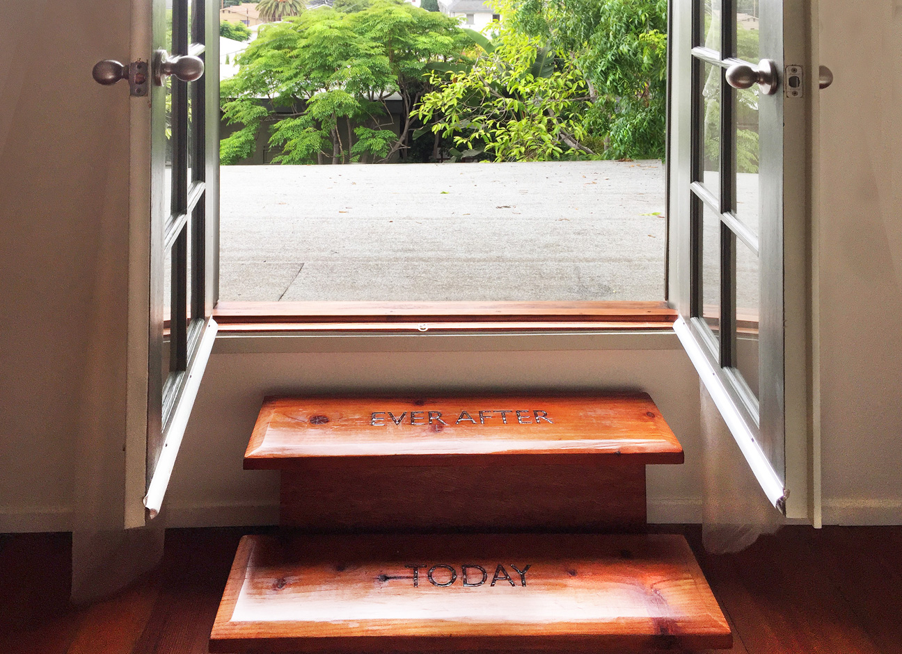 Steps to Roof.s.jpg