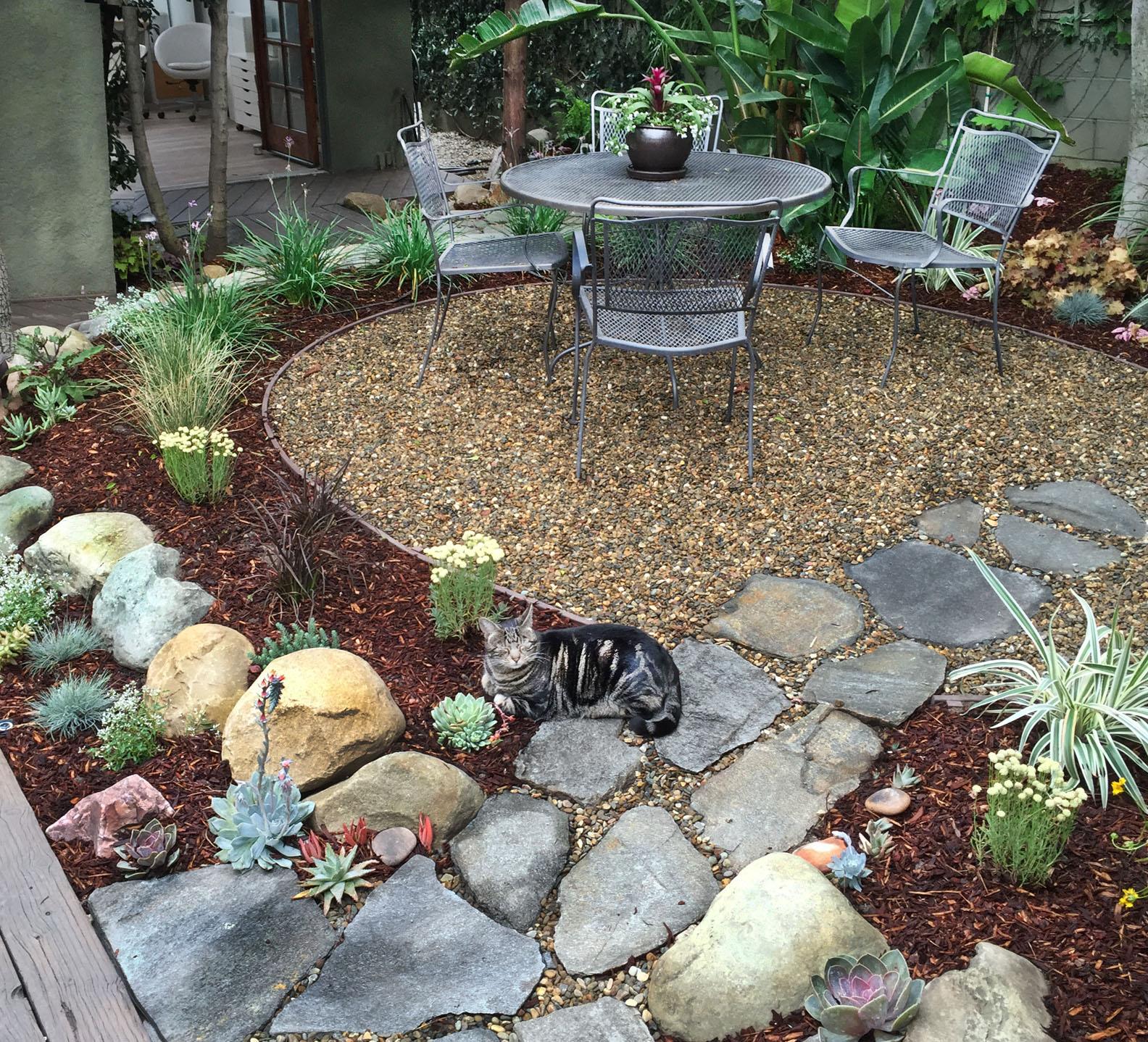 Garden cat.s.jpg