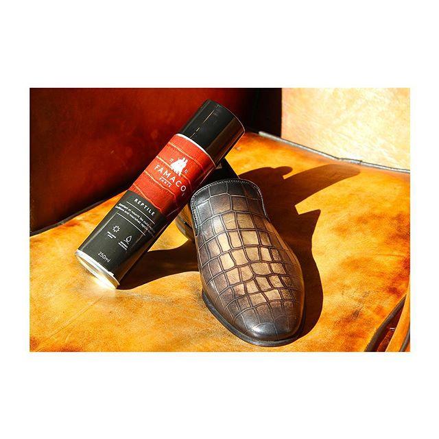 🇫🇷 : Langue de vipère 🐍 🇬🇧 : We guarantee that this is not snake oil -  Un cirage qui s'adapte à tous les cuirs, et même à vos cuirs de reptile ! Un grain de qualité, photographié chez @bertinoetolivier.  #famacoparis #madeinfrance #leathercosmetics #leather #cuir #chaussures #shoes #shoeslovers #entretienducuir #art#snake