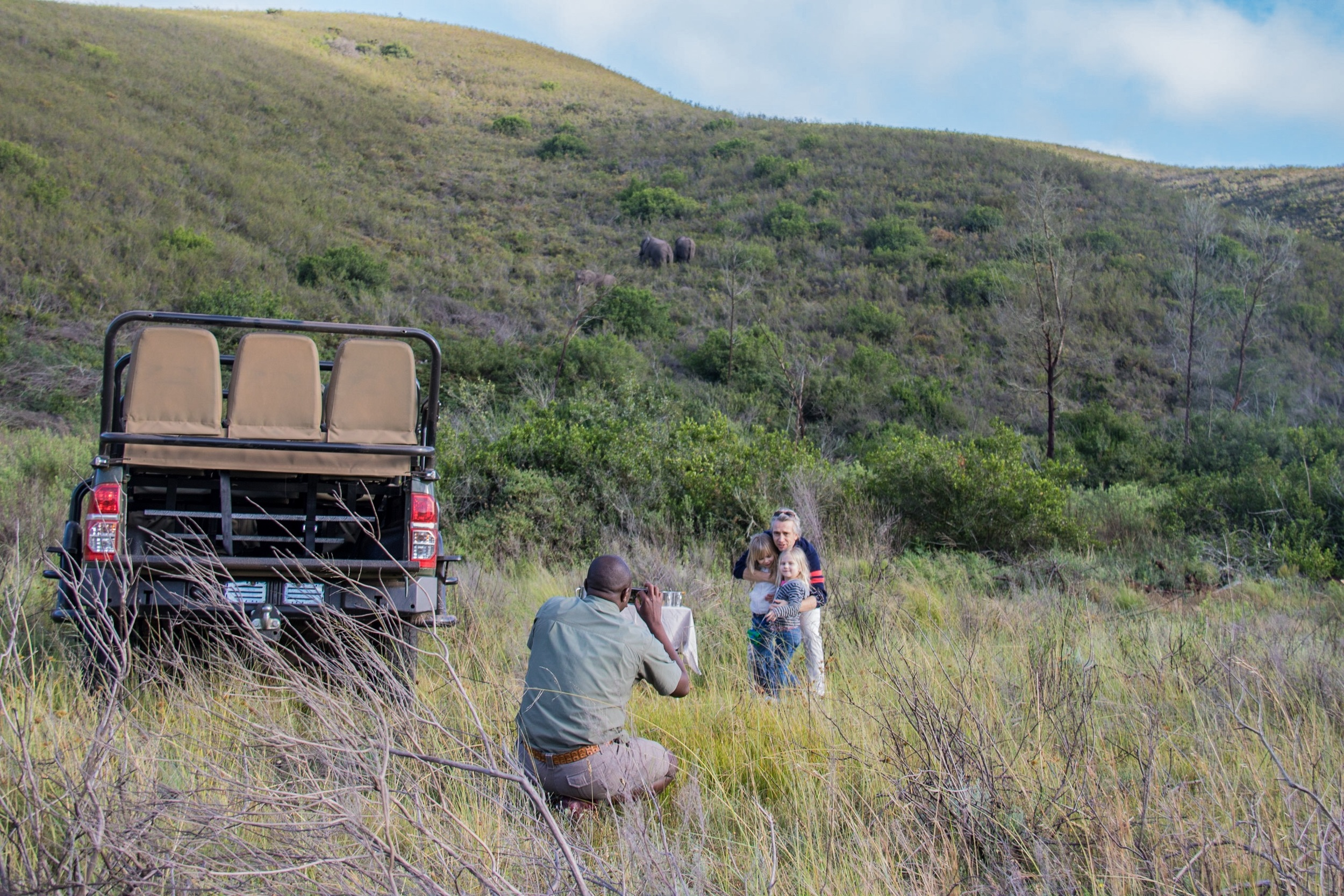Morning game drive: breakfast with elephants