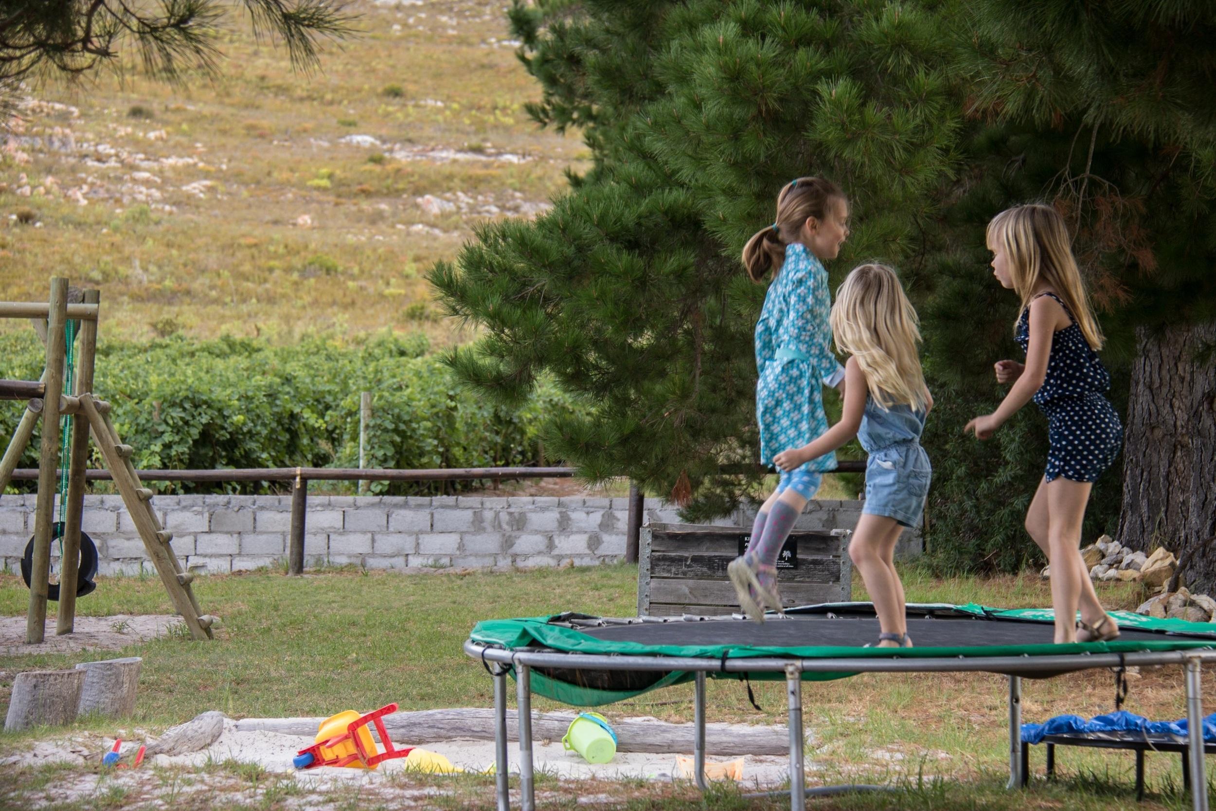 Playground at Blue gum