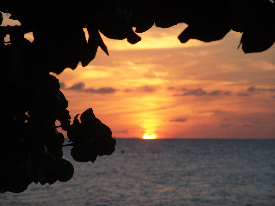 sunset-1029030.jpg