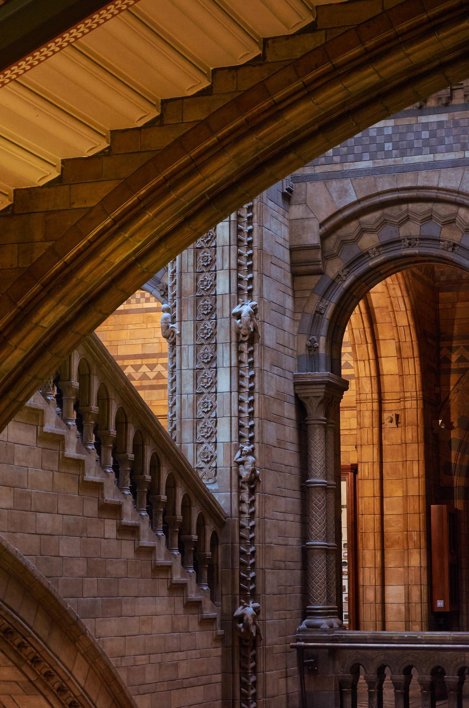 natural-history-museum-660494 (2).JPG